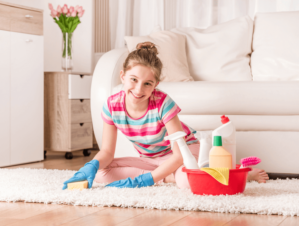 Best Homemade Carpet Cleaning