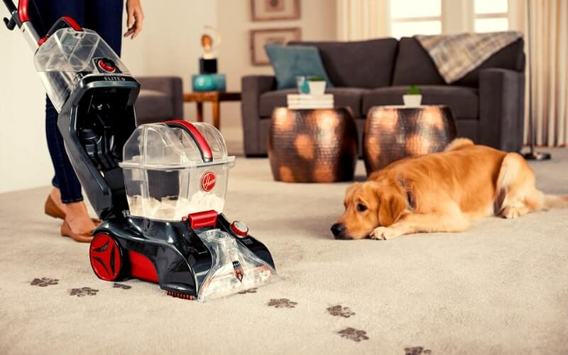 best carpet shampooer for pets